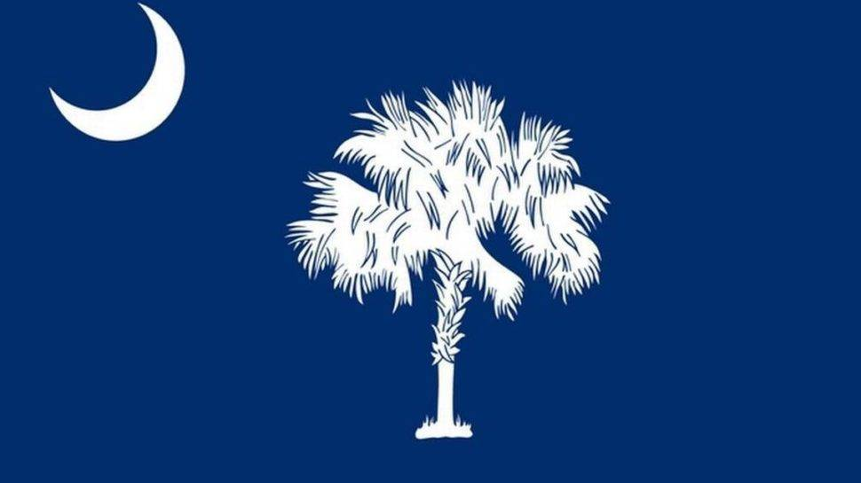 What Is The History Of The South Carolina Flag Gvltoday