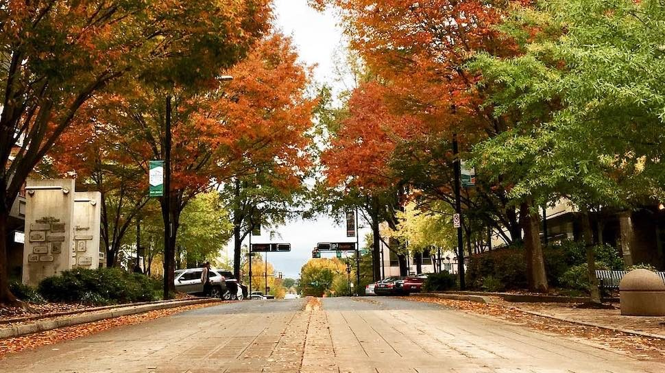 greenville-downtown-fall