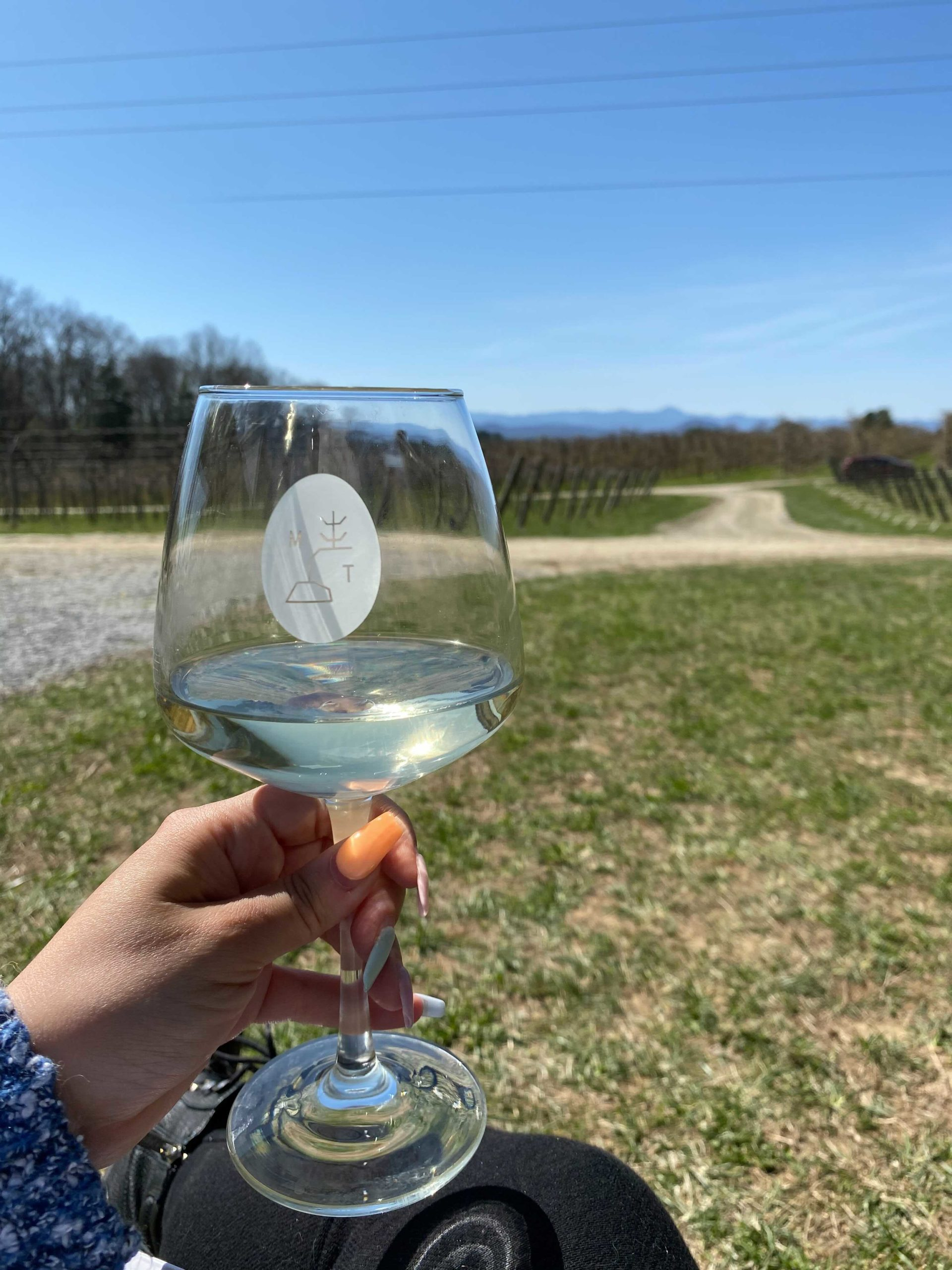 Wine at Marked Tree Vineyard | Photo by GVLtoday Team